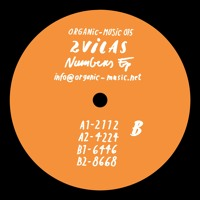 ORG 015 / 2VILAS - Numbers EP Artwork