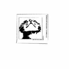 Стук Бамбука в 11 Часов - Слабый тигр
