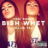 Dj Taj ~ Bish Whet (Toni Romiti Vocals) mp3