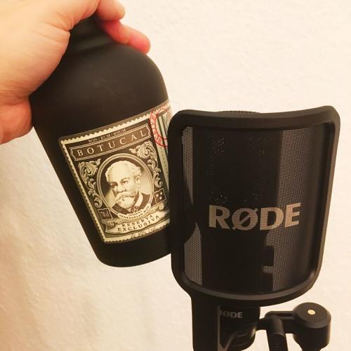16 Bars: Mikrofon & Rum