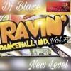Dj Blaze Dancehall Ravin' Vol.7 New Level