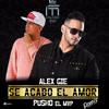 Alex Gie Ft. Pusho - Se Acabo El Amor (Official Remix) (www.GotDembow.net)