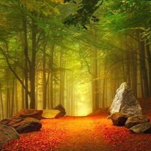 Higher Consciousness Online, two testimonials
