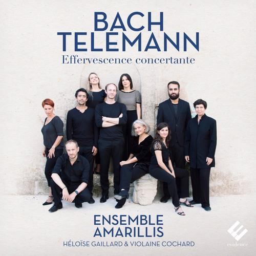 Telemann - Concerto for Flute, Strings & Continuo (Presto) Ensemble Amarillis