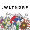 TNFL Guest Mix - .wltndrf
