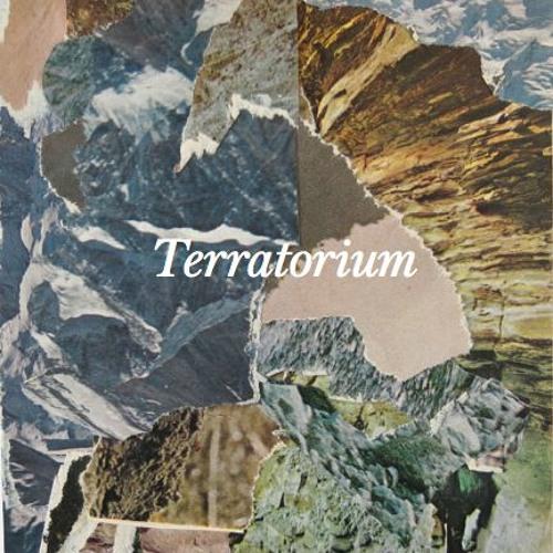 Terratorium. Gry Bagøien