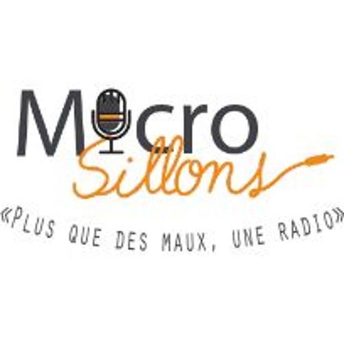 Emi-Sillon de Février 2017