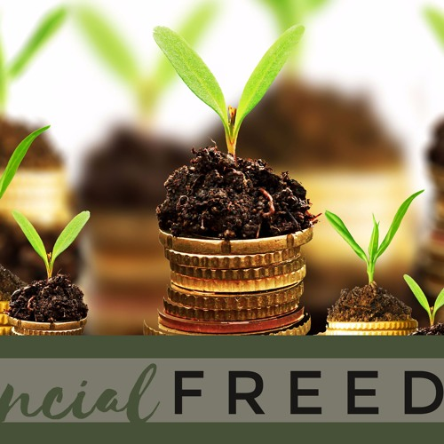 Financial Freedom - Part 3