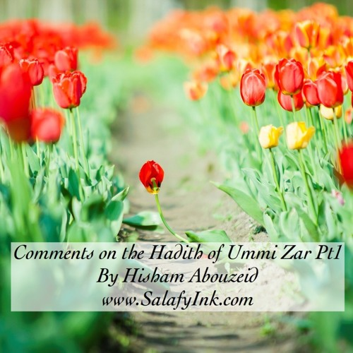Comments on the Hadith of Ummi Zar Pt1 By Hisham Abouzeid