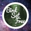 Sia - Bird Set Free   #CorylusCovers ♫♪