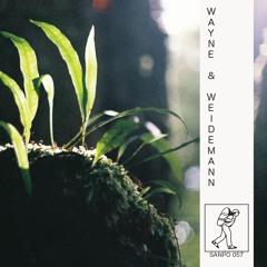 WAYNE & WEIDEMANN - SANPO 057 (NTS 29/1/17 Pt. 2)