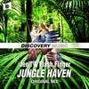 Jungle Haven [Discovery Music] (Supported by Yves V)