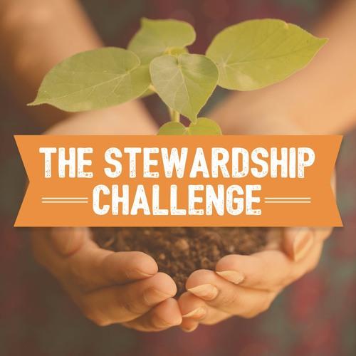 The Stewardship Challenge