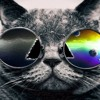 Thee Cool Cats - (Best Remix) [Free DL]