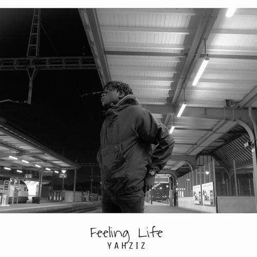 Feeling Life