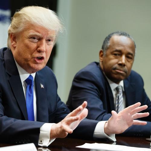 Trumps USA: Trumps folk vil brænde den eksisterende orden ned til grunden, så en ny kan bygges op