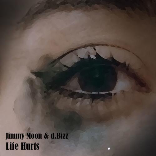 9eae9c7a21 Jimmy Moon - Jimmy Moon   d.Bizz - Life Hurts (BUY FREE DOWNLOAD ...