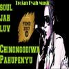 Soul Jah Love - Chinongodiwa Pahupenyu (Trojan Fyah Music) 2016