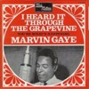 Marvine Gaye - Grapevine - Bootleg (Sample)
