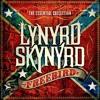 Lynyrd Skynyrd 'Freebird' - Cover