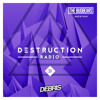 Debris & The Bugbears - Destruction Radio 031 2017-02-04 Artwork