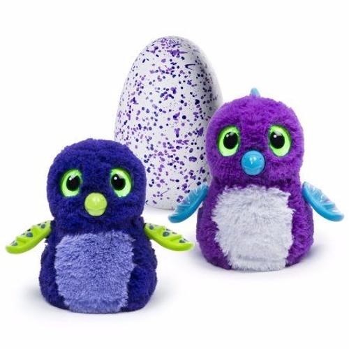 Do Hatchimals ACTUALLY Swear? And other interesting stories...