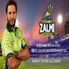 Mein Zalmi Hon Peshawar Ka - Rahat Fateh Ali Khan - HBLPSL