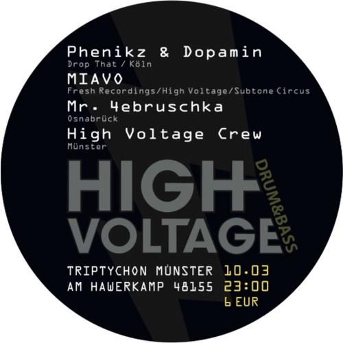 Phenikz & Dopamin - Promomix High Voltage 10.03.17 - Triptychon Münster