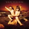 Can't Stop Lovin' You - Van Halen Cover