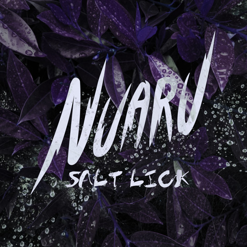 Nuaru - Salt Lick