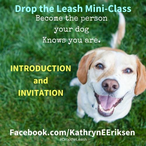 Drop the Leash Mini-Class Intro