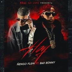 Ñengo Flow Ft. Bad Bunny - Hoy Yo Quiero Beber