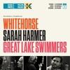 Sarah Harmer — Odessa (Caribou cover)