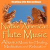 Pow Wow (Native American Flute)