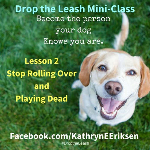 Drop the Leash Mini-Class Lesson 2 - Stop Rolling Over