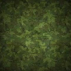Армия брат - 300 кило тратила