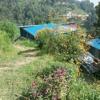 Hemant Rana - Saili.mp3