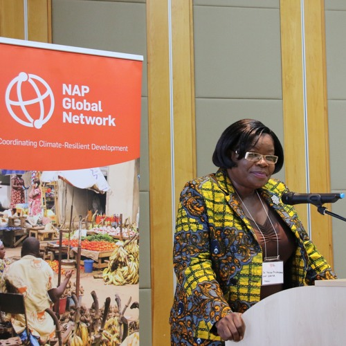 Malawi hosts NAP Global Network forum on adapting to climate change