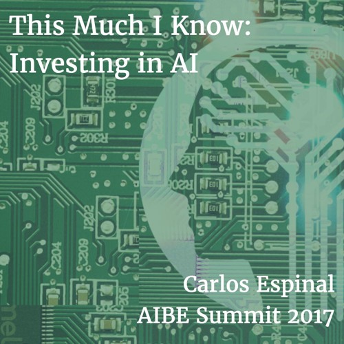 Investing in AI: Carlos Espinal speaking at the AIBE Summit 2017
