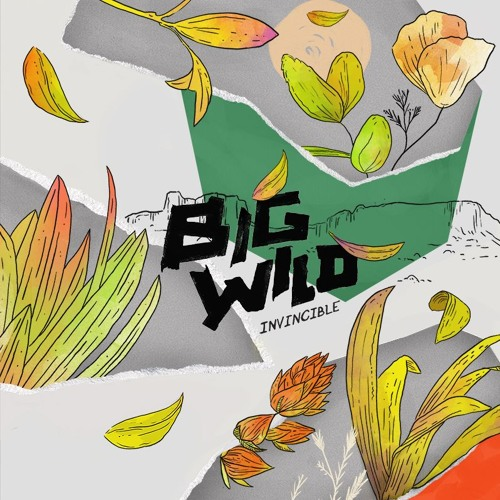Big Wild - Invincible EP