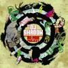 DJ Shadow - Stem (Blank Image Remix)