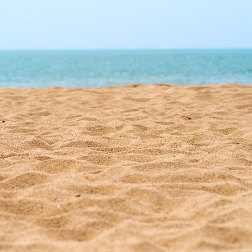 Com es mouen les sorres del litoral barceloní?