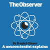 A neuroscientist explains: listener's emails about memory