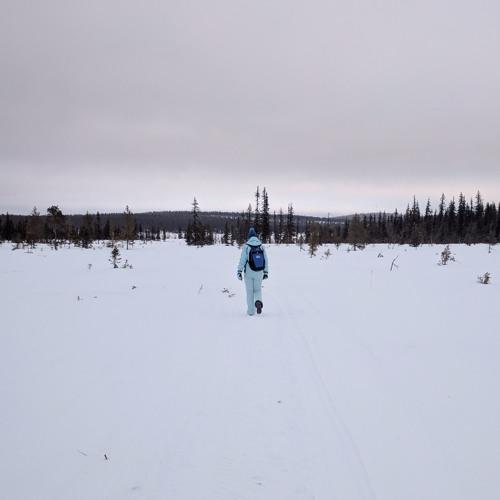 Arctic Wind Over Frozen Lake