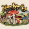 Ramblin Man - Allman Brothers By Menny B.Good