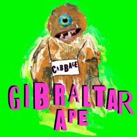 Cabbage - Gibraltar Ape