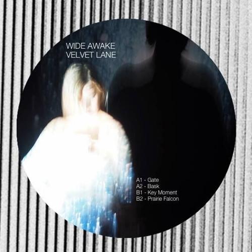 WIDE AWAKE - Gate (Original Mix)
