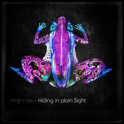 Hiding In Plain Sight (Signed Elektrax)