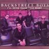 David S. - I'll Never Break Your Heart  (cover Backstreet Boys)