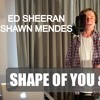Shape Of You by Ed Sheeran & Mercy by Shawn Mendes | Michel Waldhof Cover (DOWNLOAD)